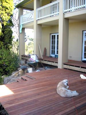 Max enjoys his new decking in Turramurra