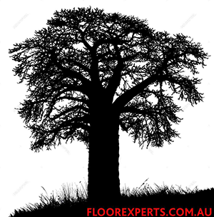Sydney timber flooring company